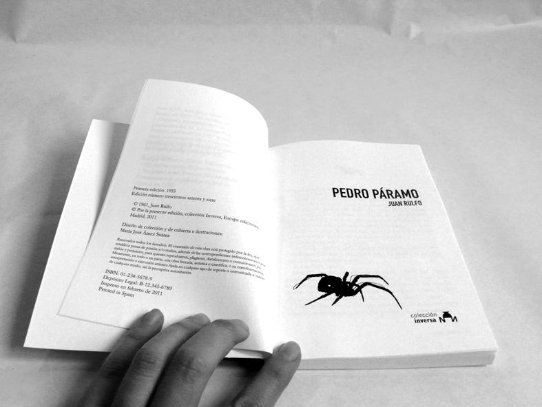 Diseño editorial en un libro